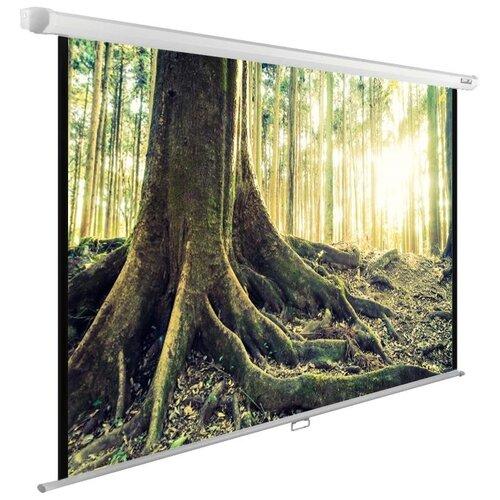Фото - Рулонный матовый белый экран cactus WallExpert CS-PSWE-220x220-WT cactus cs pswe 200x150 wt