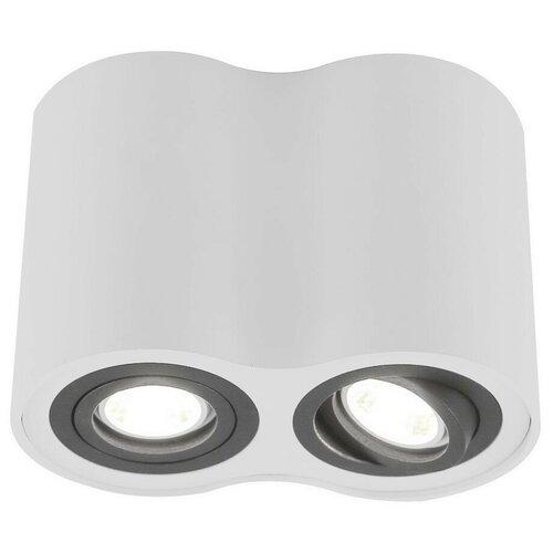 Спот Arte Lamp Falcon A5644PL-2WH