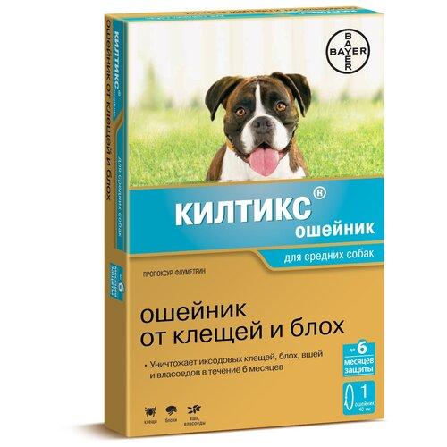 Килтикс (Bayer) ошейник от блох и клещей инсектоакарицидный для собак и щенков, 48 см bayer kiltix bayer ошейник килтикс для собак крупных пород 66 см