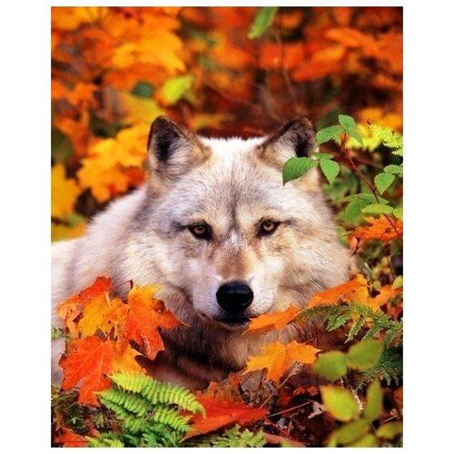 Купить Алмазная вышивка Яркие Грани Волк , размер 40х50см, 56 цветов