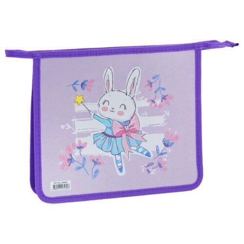 ArtSpace Папка для тетрадей Ballet А5, на молнии, пластик фиолетовый, Файлы и папки  - купить со скидкой