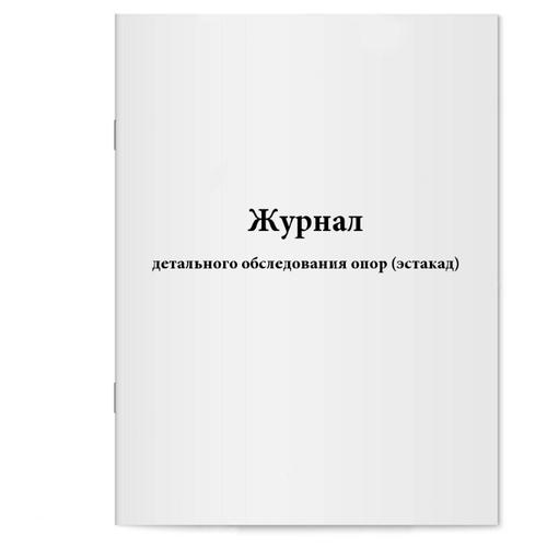 Журнал детального обследования опор (эстакад). Сити Бланк