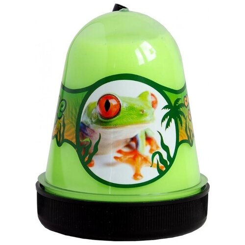 Лизун SLIME Jungle Лягушка с мухами (S300-25) зелeный