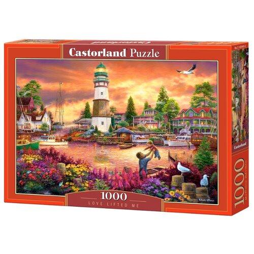 Купить Пазл Castorland Love Lifted Me (C-103645), 1000 дет., Пазлы