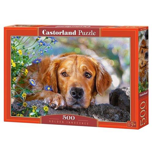 Купить Пазл Castorland Golden Innocence (B-52622), 500 дет., Пазлы