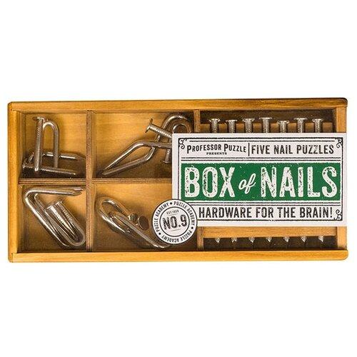 Набор головоломок Professor Puzzle Puzzle Academy Box of Nails (PA1445) 5 шт. стальной