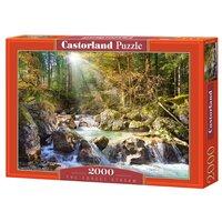 Пазлы 2000 Лесной ручей C-200382 Кастор