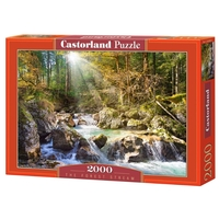 Пазл Castorland The forest stream (C-200382) , элементов: 2000 шт.
