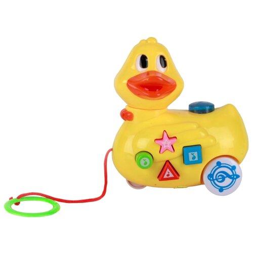 Купить Каталка-игрушка Умка Уточка с потешками (B795360-R) со звуковыми эффектами желтый, Каталки и качалки