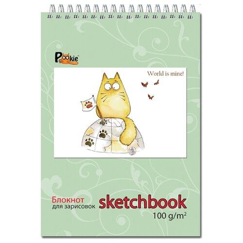 Купить Скетчбук для зарисовок Полином Sketchbook 21 х 14.8 см (A5), 100 г/м², 60 л., Альбомы для рисования