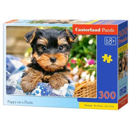 Купить Пазл Castorland Puppy on a Picnic (B-030187), 300 дет., Пазлы