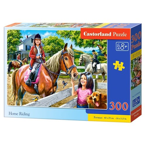 Купить Пазл Castorland Horse Riding (B-030095), 300 дет., Пазлы