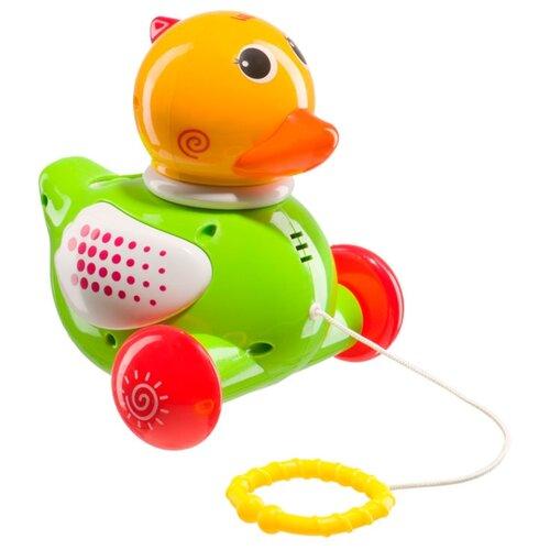 Каталка-игрушка Happy Baby DUCKY (331246) со звуковыми эффектами зеленый/желтый/красный каталка игрушка molto утёнок с ручкой 7925 со звуковыми эффектами желтый зеленый красный