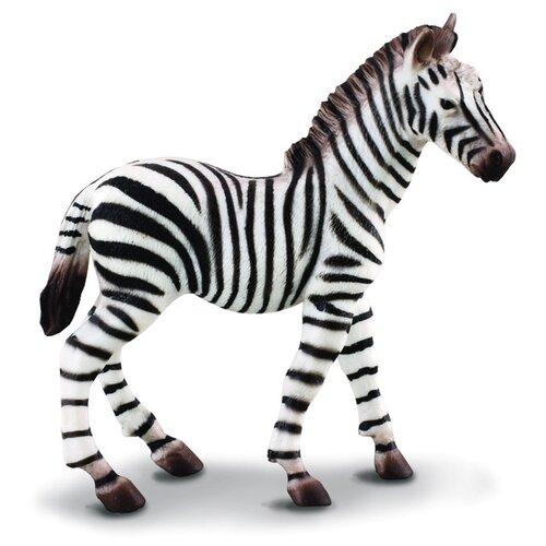 Фигурка Collecta Жеребенок зебры 88168, Игровые наборы и фигурки  - купить со скидкой