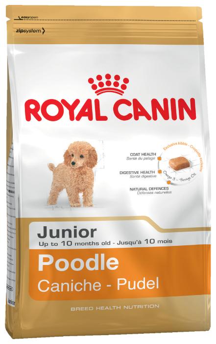 Корм для щенков Royal Canin Пудель для здоровья кожи и шерсти