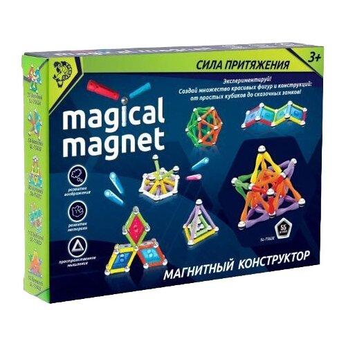 Магнитный конструктор Zabiaka Magical Magnet 1387369-55 Необычные фигуры
