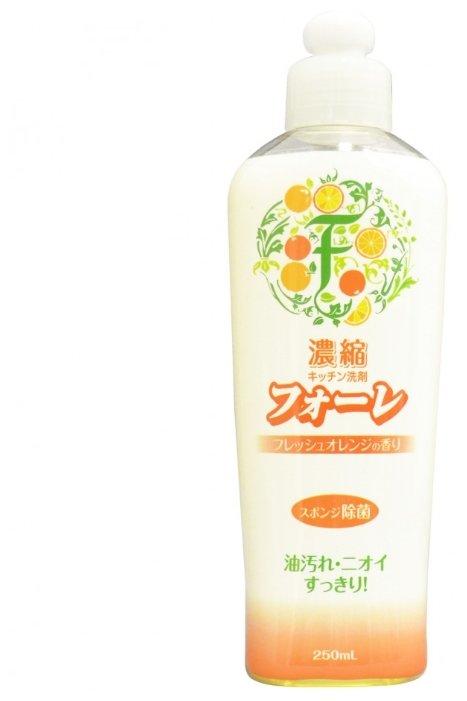 Kaneyo Средство для мытья посуды Faure Апельсин