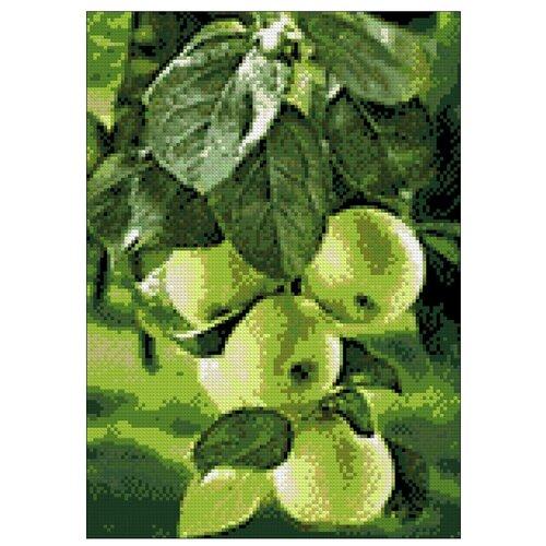 Гранни Набор алмазной вышивки Зеленые яблоки (ag208) 27x38 см
