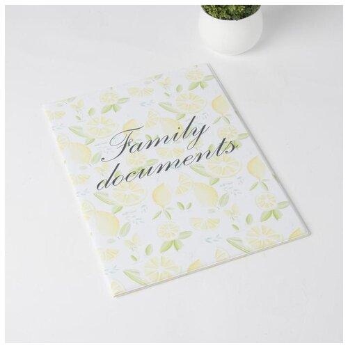 Обложка документы д/семьи, 22,5*1,0*31, с вкладышами ПВХ на 1 комплект,