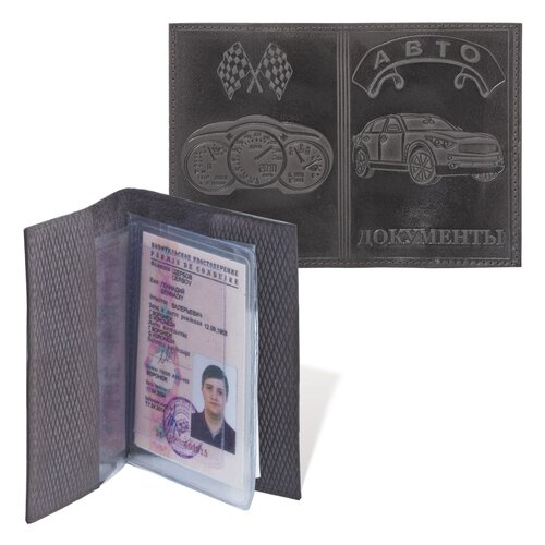 Обложка для автодокументов, 127х92 мм, натуральная кожа, конгревное тиснение, цвет ассорти, АД-04