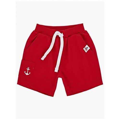 Фото - Шорты Mini Maxi, 4142, цвет красный 4142(4)красный-98 98 шорты mini maxi 4248 цвет красный 4248 2 красный 98 98