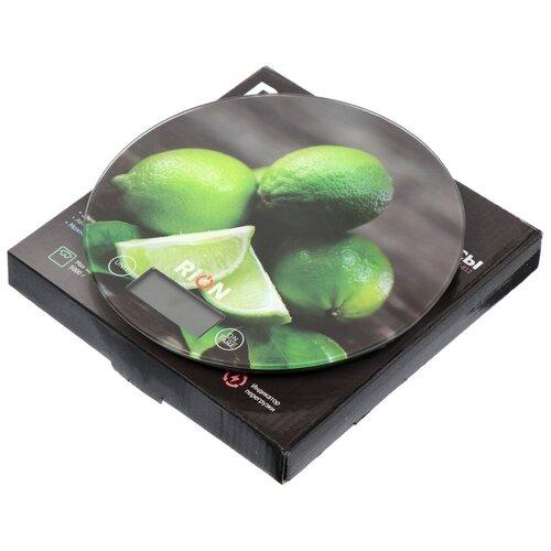 Весы кухонные электронные Rion Лайм PT-812 до 5 кг недорого
