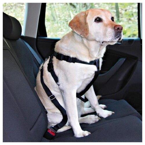Фото - Фиксирующий ремень для собак TRIXIE 1290 60 см черный фиксирующий ремень для собак trixie 1293 черный