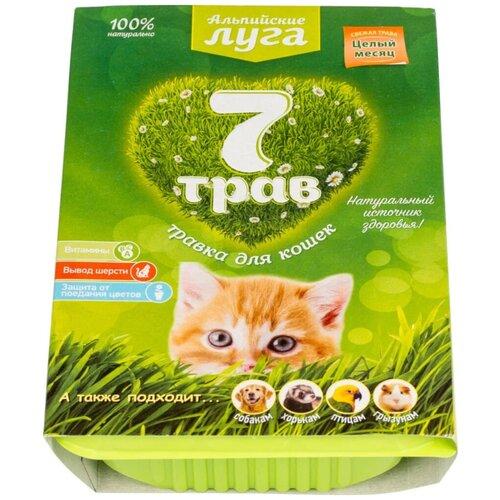 Лакомство для кошек Альпийские луга Травка 7 трав Набор для выращивания, 75 г
