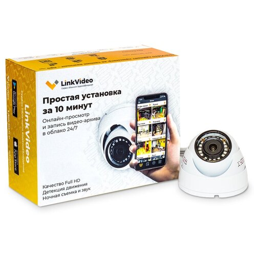 Купольная IP-камера с записью в облако LinkVideo. Простое подключение за 10 минут / Готовый комплект видеонаблюдения / Видеонаблюдение для дома и помещений