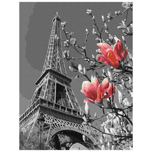 Картина по номерам Весна в Париже, 30x40 см