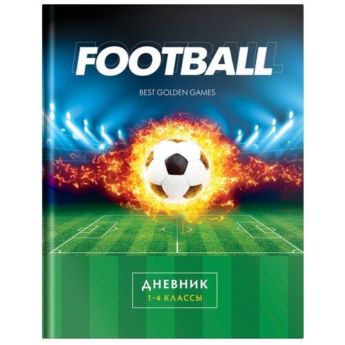 ArtSpace Дневник школьный Спорт. Футбол синий/зеленый