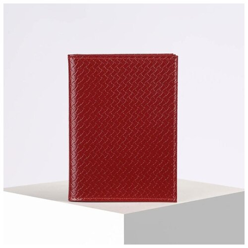 Обложка д/автодок+паспорт ОвпS24-310, 10*1*13,5см, плетенка красный 2923845