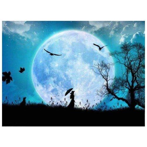 Купить Алмазная вышивка Яркие Грани Лунный свет , размер 50х38см (200х150 кристаллов), 51 цвет