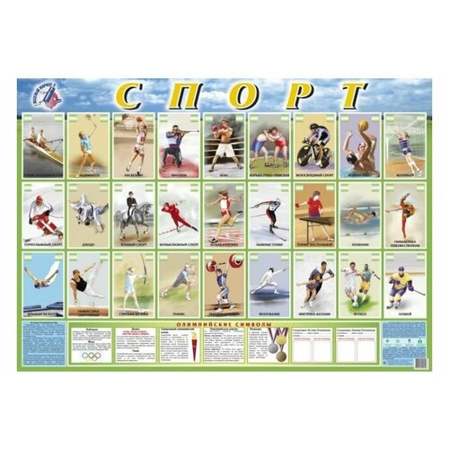 Плакат Маленький гений Спорт 9049