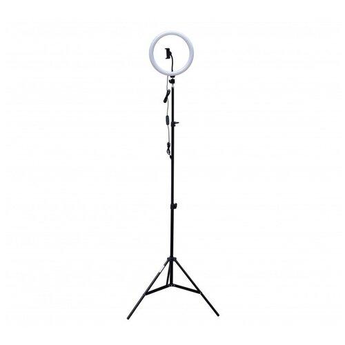 Фото - Осветитель Rekam RL-20 LED, для смартфона, 10 Вт, 3000 / 5800 К штатив rekam rl 20 led table kit настольный черный