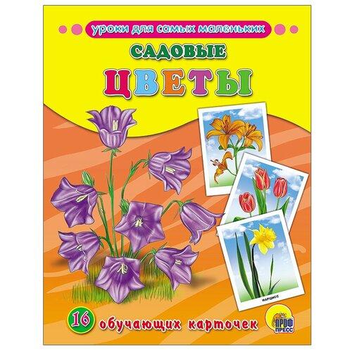 Фото - Набор карточек Проф-Пресс Садовые цветы 22x17 см 16 шт. набор карточек агабум цветы 20 шт