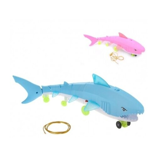 Каталка-игрушка Наша игрушка Акула (643423) игрушка