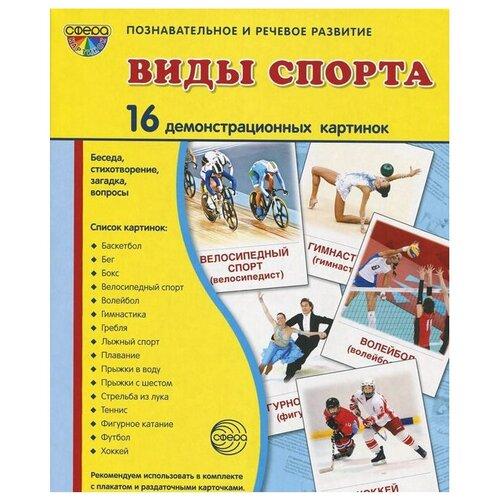 Набор карточек Творческий Центр СФЕРА Виды спорта 22x17.3 см 16 шт.