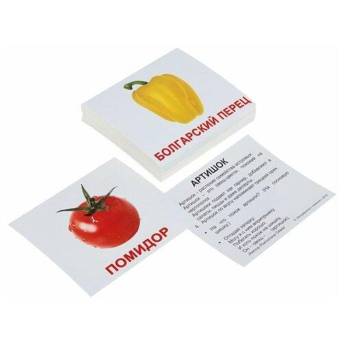 Набор карточек Вундеркинд с пелёнок Мини-40. Овощи с фактами. 10x8 см 40 шт.