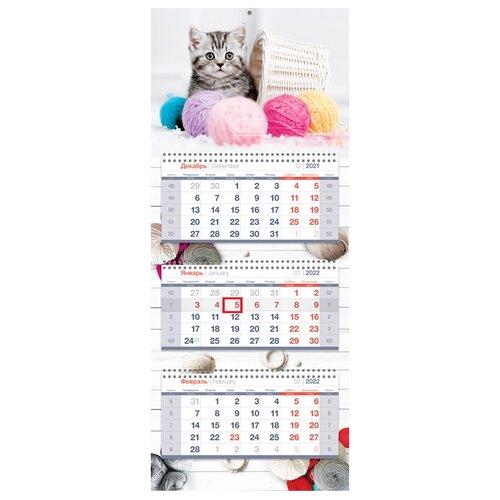 Купить Календарь квартальный настенный на 2022 год The kitten , OfficeSpace, Календари