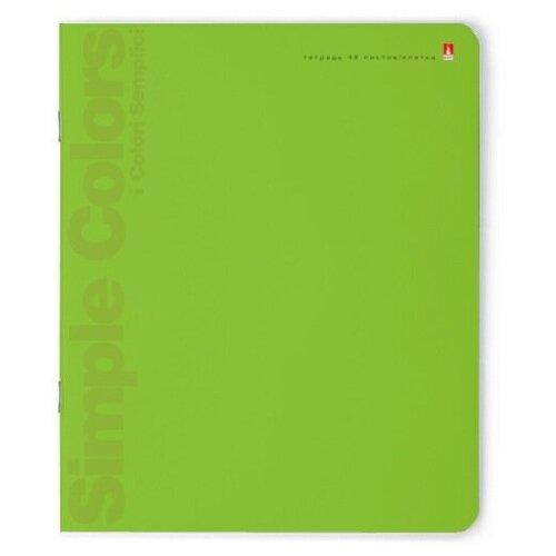 Тетради 48 листов в клетку, серия Простые цвета. Набор 5 шт. Цена за 5 штук. тетради 48 листов в клетку серия премиум металлик набор 5 шт цена за 5 штук