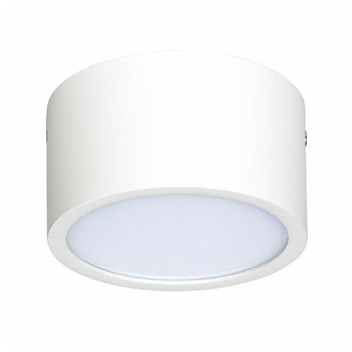 Фото - Светильник светодиодный Lightstar 211916, LED, 10 Вт светильник светодиодный lightstar urbano 214994 led 10 вт