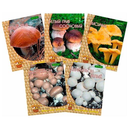 Набор мицелия грибов Грибные хиты (5 шт.)