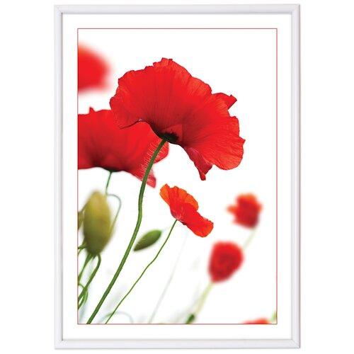 фотоальбомы и рамки veld co фоторамка poster 13х18 см Фоторамка Veld Co PR 15798/15795/15797/15796/15802, 21х29.7 см белый