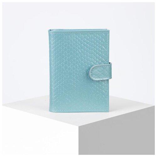 Обложка д/автодок+паспорт ВП1126к-134 10*1,5*13,5, питон голубой 5312132