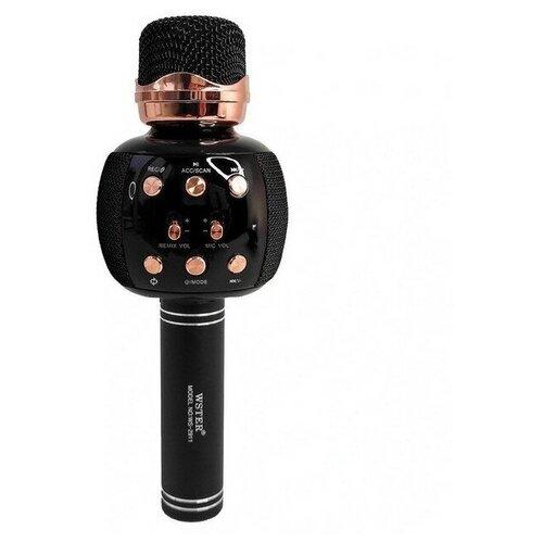 Беспроводной караоке-микрофон WSTER WS-2911, черный