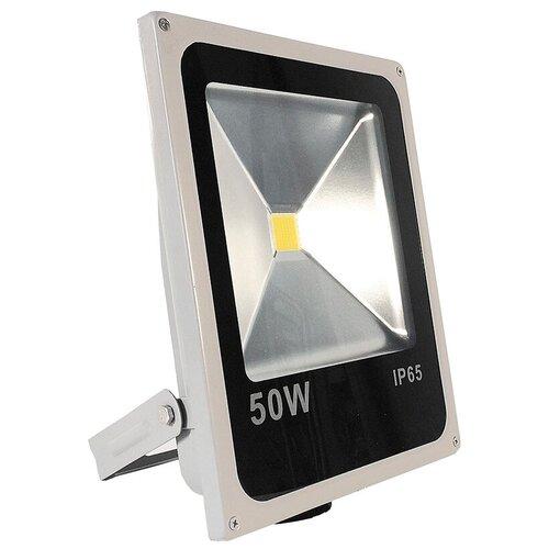 Прожектор светодиодный 50 Вт Image LFL.597.23
