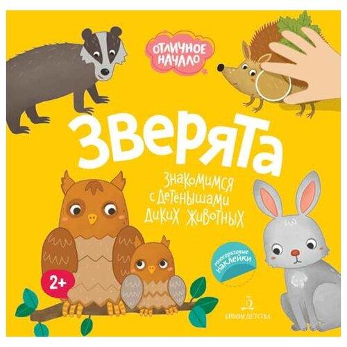 Купить Баканова Е. Зверята. Знакомимся с детенышами диких животных , Бином Детства, Книги для малышей