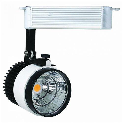 Трековый светильник-спот HOROZ ELECTRIC Roma-23 HRZ00000845 недорого