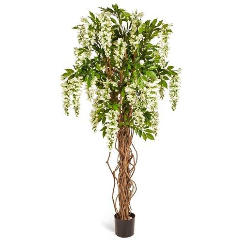 Искусственное дерево Вистерия лиана белая 180 см, цвет: белый pablo de gerard darel белая блузка с рельефной отделкой
